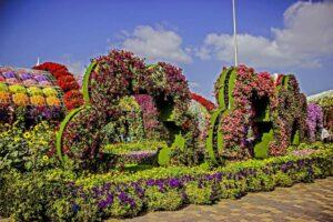Miracle Garden czyli Ogród Cudów w Dubaju